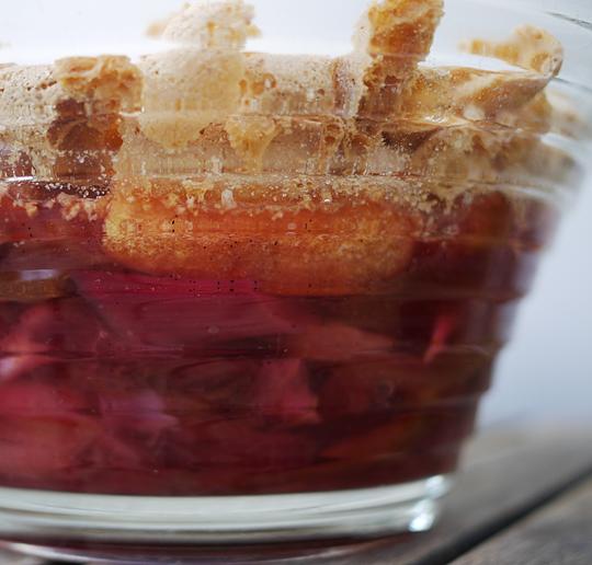 rabarber trifli