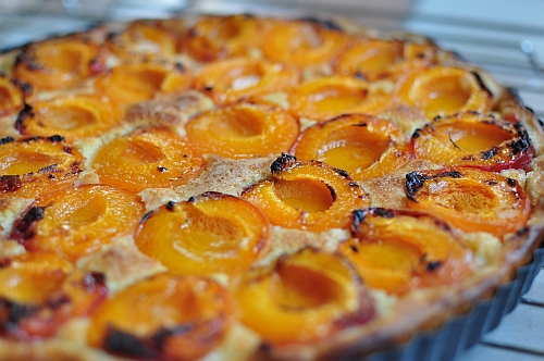 Abrikostærte