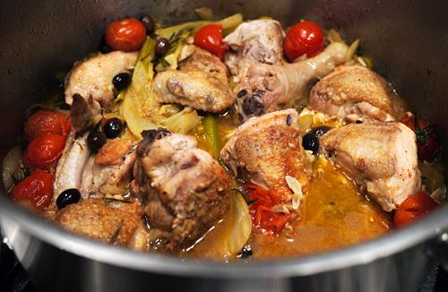 braiseret kylling med fennikel og tomat